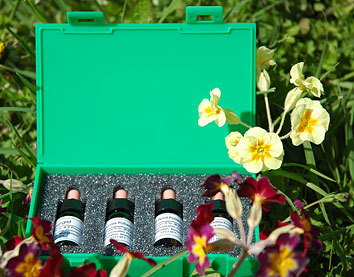 Homeopathic hayfever remedy kit